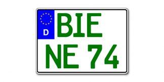 Grünes Motorrad Kennzeichen EU zweizeilig 280 mm - altes Maß